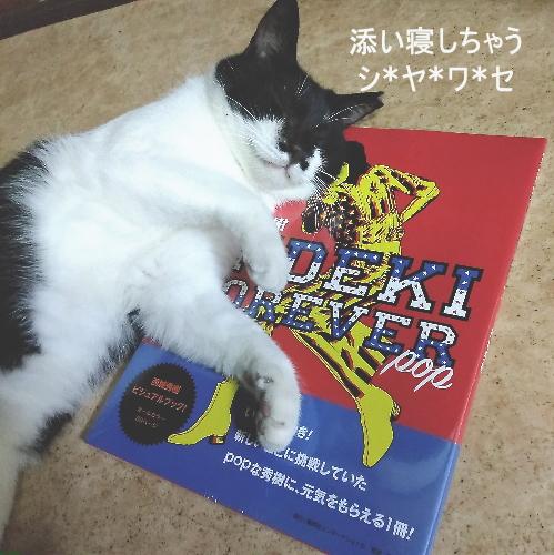 higehideki2.jpg